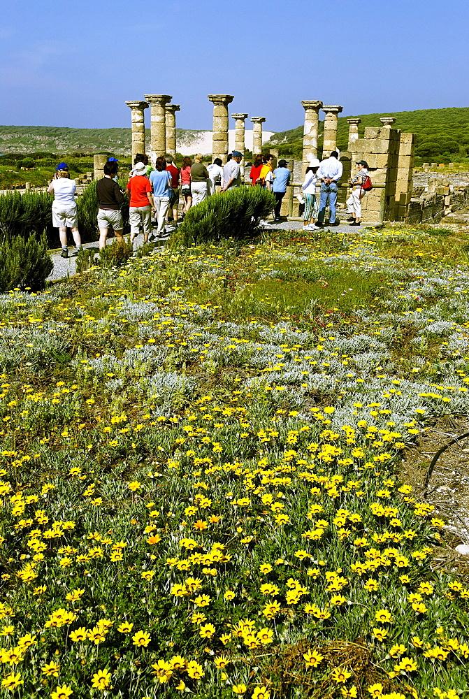 Forum, archeologic park Baelo Claudia near Tarifa, Andalusia, Spain, Europe
