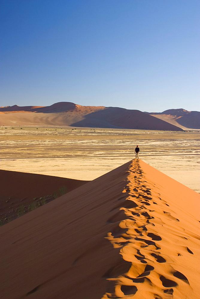 Sand dune, Sossusvlei, Namibia, Africa