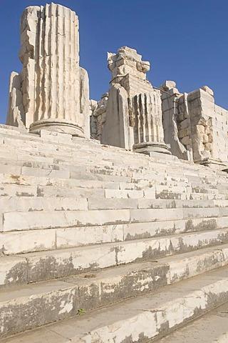 Apollo temple, Ionian columns, Didyma, Turkey