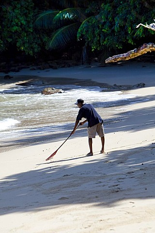 Creole cleaning the beach, Mahe Island, Seychelles, Indian Ocean, Africa - 832-230663