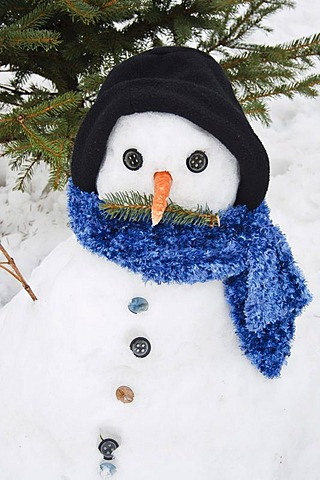 Snowman with hat, scarf and carrot nose