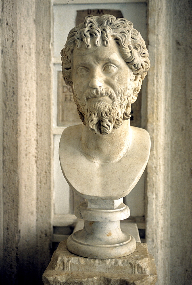 Ancient marble bust of Emperor Septimius Severus, gallery, Capitoline Museums, Palazzo Nuovo, Capitoline Hill, Rome, Lazio, Italy, Europe