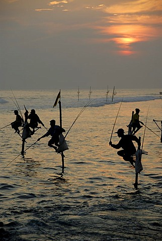 Stilt fishermen, sunset, fishermen on stilts fishing in the shallow water, Indian Ocean, Ceylon, Sri Lanka, South Asia, Asia