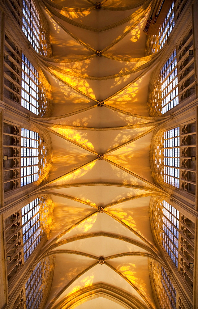 Ceiling of St. Michael and Gudula Cathedral, interior view, Brussels, Belgium, Europe