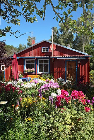 Holiday home, colourful garden, country-style, Kuroeiu Nerija National Park on the Curonian Spit near Nida in Lithuania