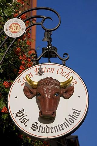 Zum Roten Ochsen, historic student's pub, inn sign, Heidelberg, Baden-Wuerttemberg, Germany