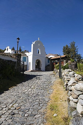Driveway to Los Frailes monastery hotel, Santo Domingo, High Andes, Venezuela, South America