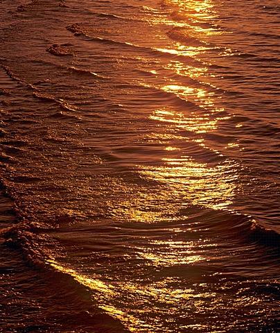 Golden light reflected in water, sunset
