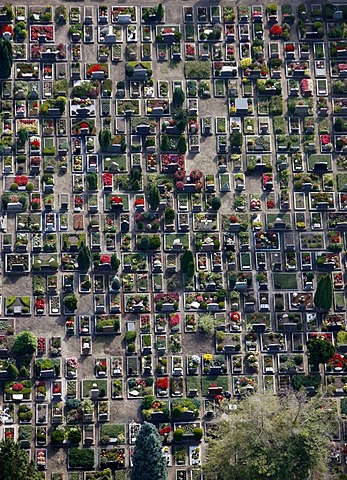 Central cemetery in Muenster, North Rhine-Westphalia, Germany, Europe
