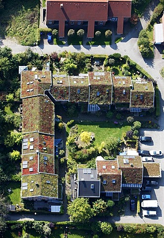 Greened roofs of one-familiy houses and multi-family houses, estate, Muenster, North Rhine-Westphalia, Germany, Europe - 832-254631