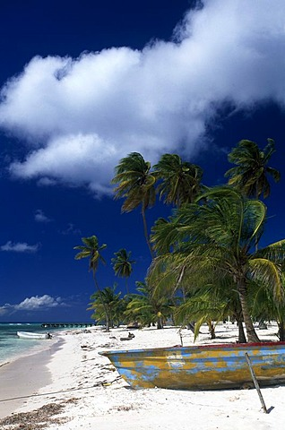 Palm beach, Manojuan fishing village on Saona Island, Parque Nacional del Este, Dominican Republic, Caribbean