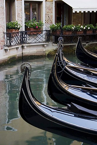 Bow fittings on Venetian gondolas