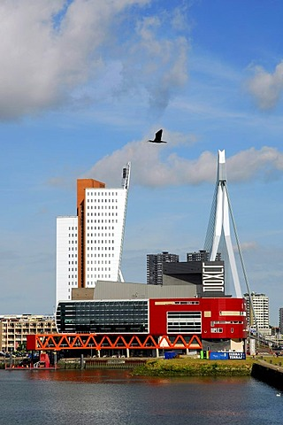 Modern architecture on the waterside: the red Luxor Theatre, on its left the Belvedere telecommunication building KPN Telecom and the Erasmusbrug bridge behind. Wilhelminapier, Wilhelminaplein, Rijnhaven, Rotterdam, South-Holland, Zuid-Holland, Nederland,