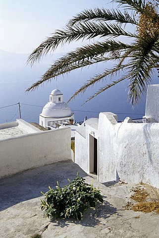 Palm tree and white church with sea view, capital city Fira at the crater rib of the volcano, Island of Santorini, Thera or Thira, Cyclades, the Aegean, Mediterranean Sea, Greece, Europe