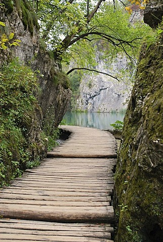 Wooden path, Plitvice Lakes National Park, Croatia, Europe