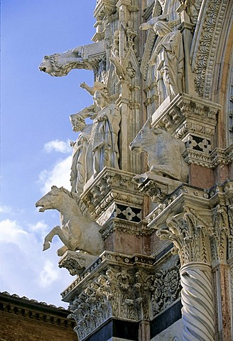 Santa Maria Assunta Cathedral, facade, detail with statues, animal figures, Siena, Tuscany, Italy, Europe