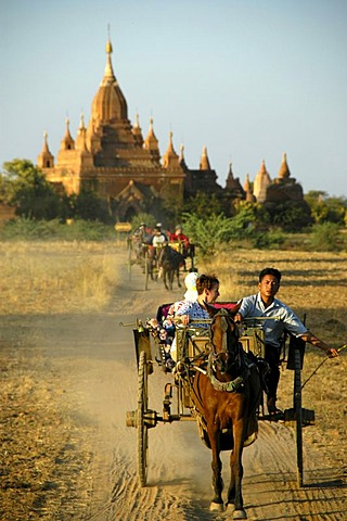 Tourists in horse carriages, Buddhist Tempel, Bagan, Birma, Burma, Myanmar, South Asia