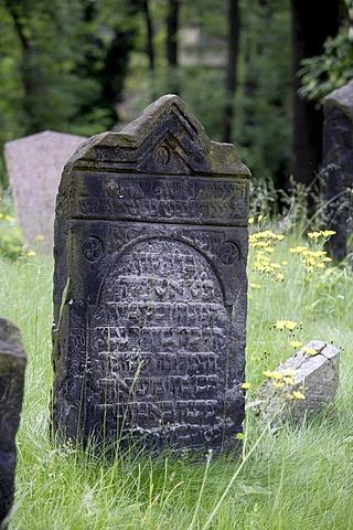 Gravestones in the old Jewish cemetery in the Josefstadt, or Josefov quarter of Prague, Czech Republic, Europe
