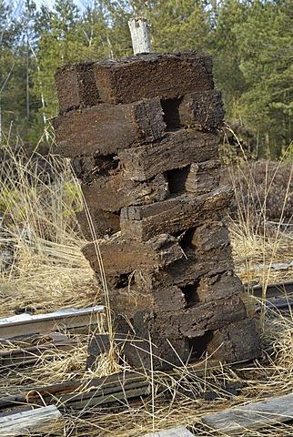 Stacks of peat sods left to dry, peat harvesting, Nicklheim, Bavaria, Germany, Europe