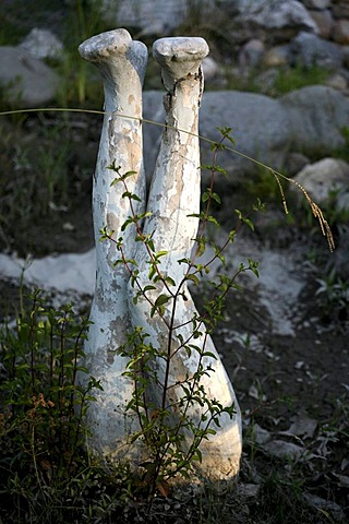 Leg sculpture with green plants