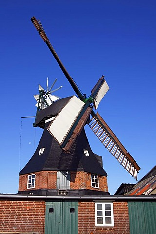 Goetzberg Mill, historic windmill, dutch style with venetian blind style wings and a wind rose, Goetzberg, Henstedt-Ulzburg, Segeberg district, Schleswig-Holstein, Germany, Europe