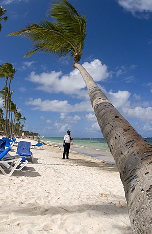 Security man on a sandy beach, Coconut Palms (Cocos nucifera), Punta Cana, Dominican Republic, Central America