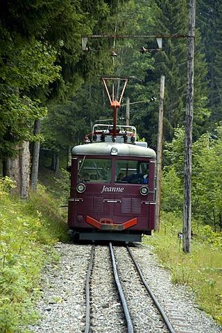 Train Jeanne Tramway du Mont Blanc rides through the forest Haute-Savoie France