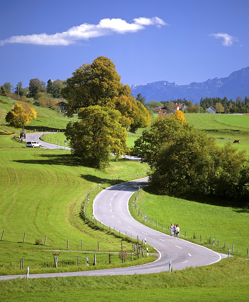 Winding country road near Riegsee Lake during fall, Upper Bavaria, Bavaria, Germany, Europe
