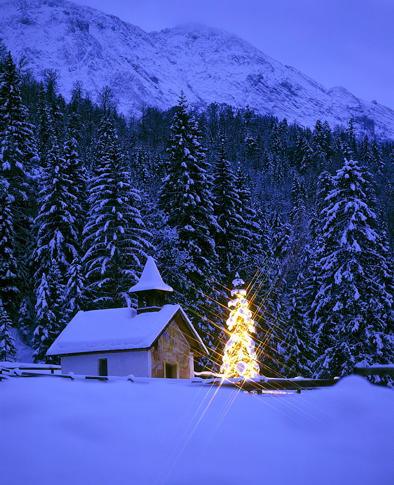 Chapel, Christmas tree near Elmau, Upper Bavaria, Bavaria, Germany, Europe