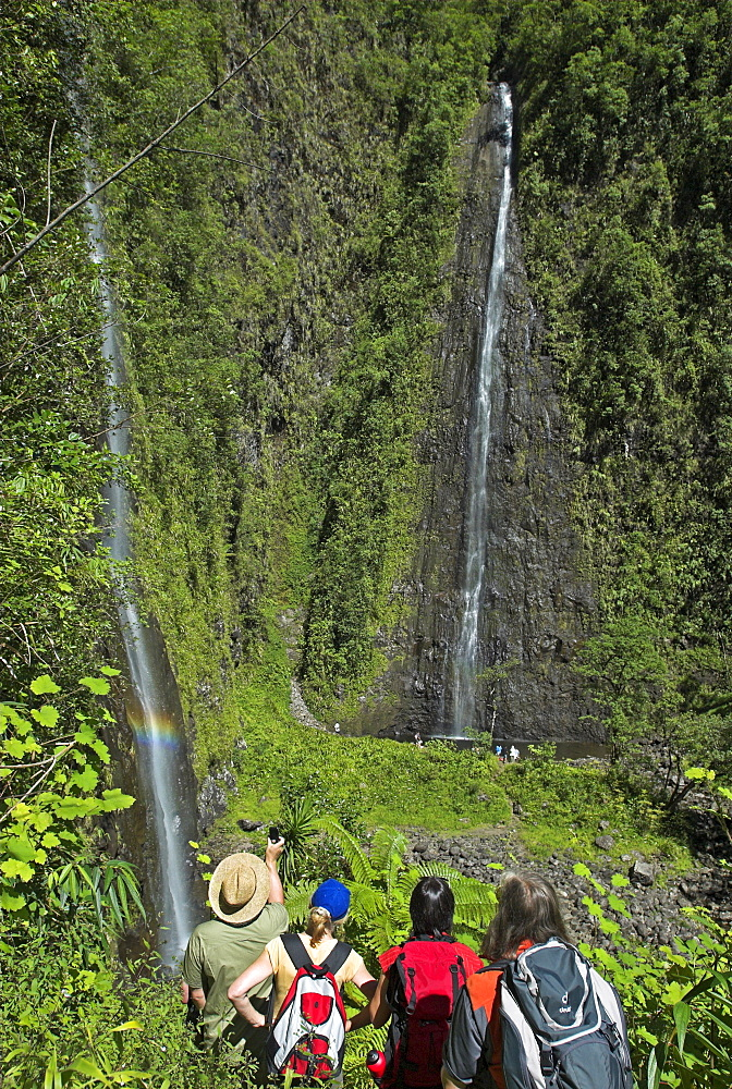 Waterfalls in the valley of Grand Etang, La Reunion Island, France, Africa