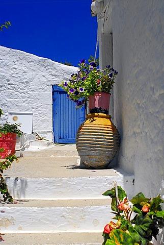 Backyard with flower pots, Fiscardo, Kefalonia, Ionian Islands, Greece