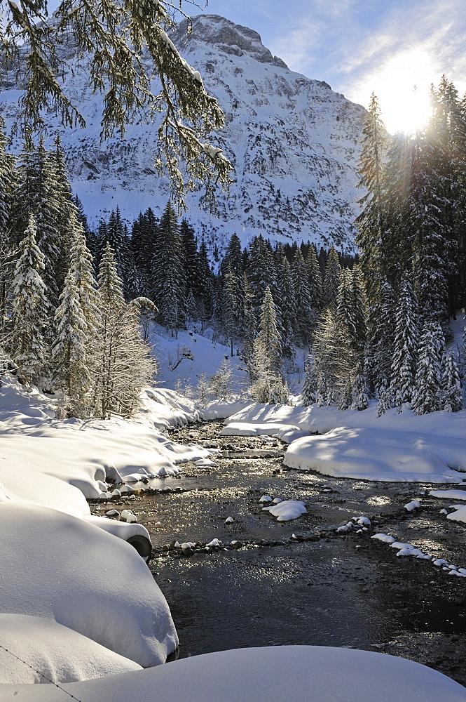 Baerguntbach, Kleinwalsertal, Austria, Europe