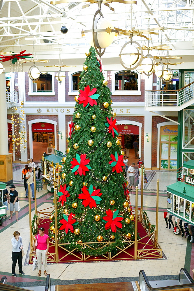 Department store, Christmas decoration, Cape Town, South Africa