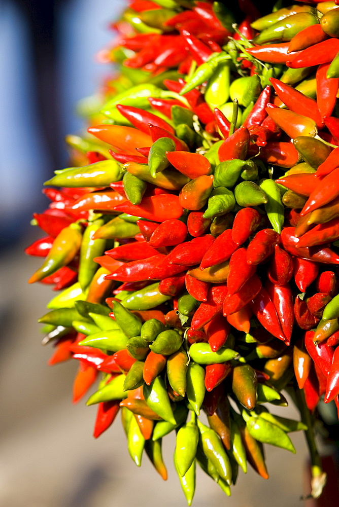 A bunch of chilis at a stall in Sirmione, Lake Garda, Italy