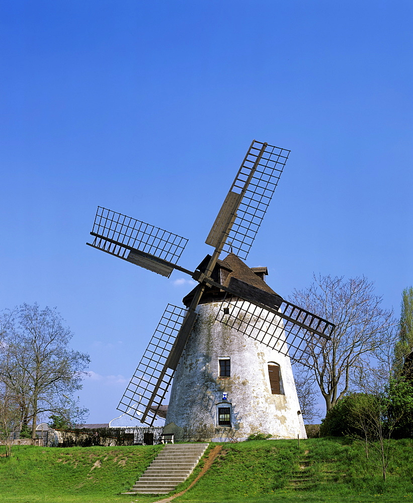 Windmill in Podersdorf am See, Burgenland, Austria, Europe