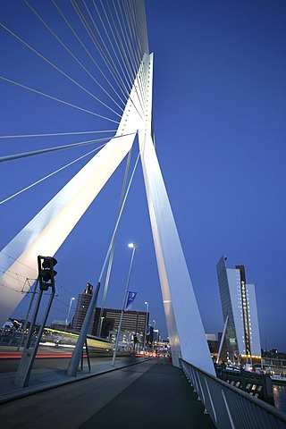 Erasmusbruk, Bridge across the Nieuwe Maas, Rotterdam, Netherlands
