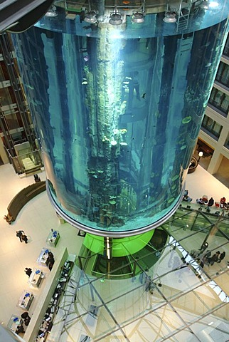DEU, Germany, Berlin : Aquarium in the lobby of the Radisson SAS Hotel. Visitor can view the sealife from the inside the 14 meter hight basin, by using a lift.