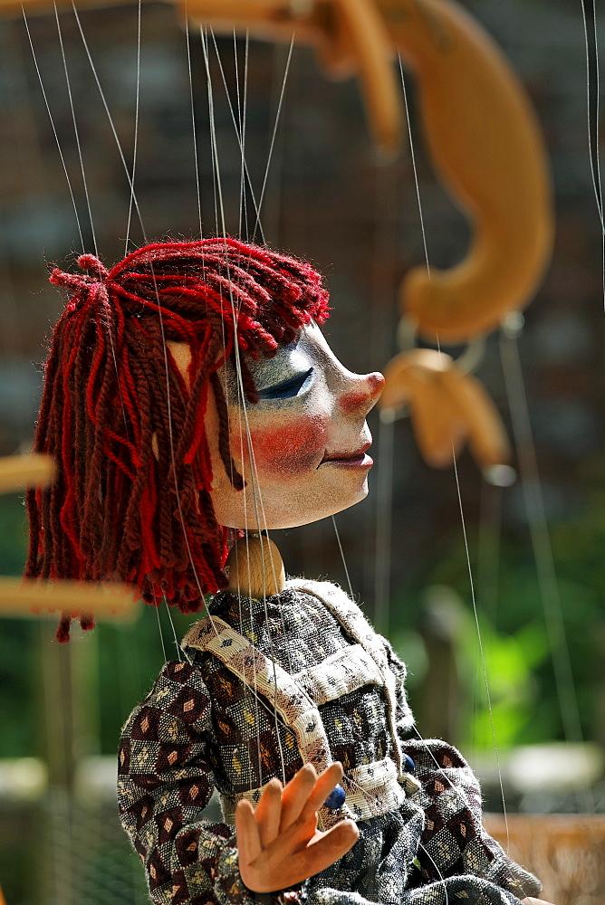 Portrait of a theatre marionette, traditional craft market, Flachsmarkt Burg Linn, Krefeld, Lower Rhineland, North Rhine Westphalia, Germany, Europe