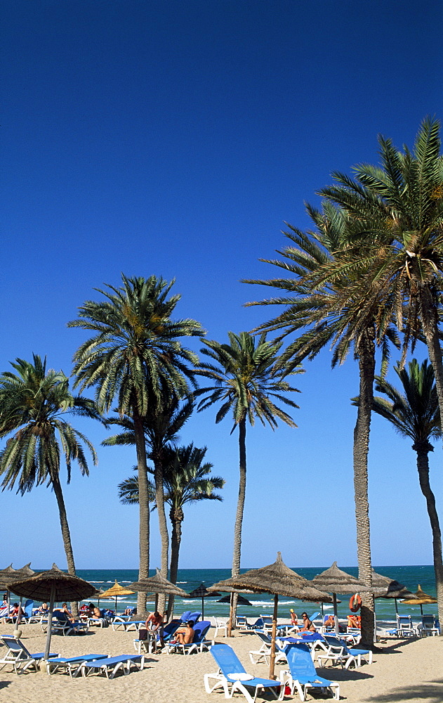 Beach, Zarzis, Djerba, Tunisia, Africa