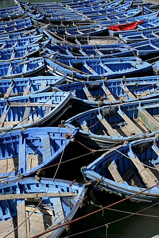Blue fishing boats, Essaouira, Morocco
