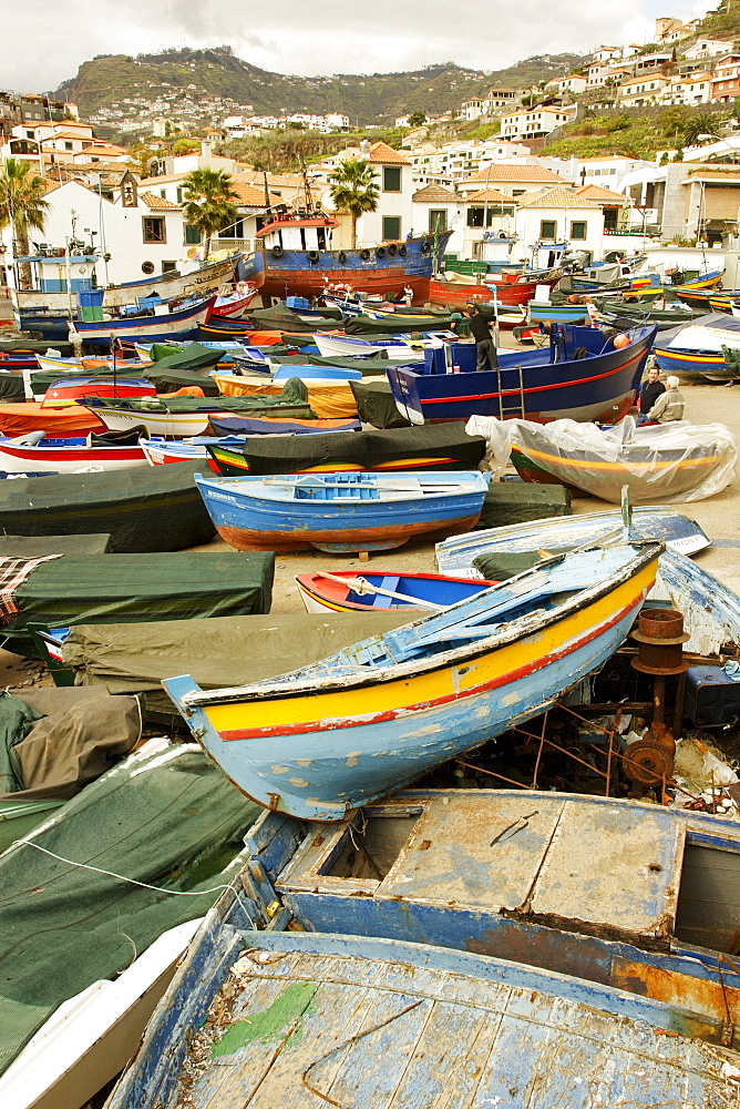 Fishing boats, harbour of Camara de Lobos Madeira Portugal