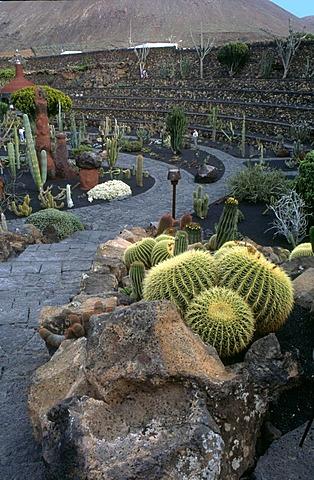 Jardin de Cactus, Lanzarote, a garden with a lot of cactuses, design from Cesar Manrique