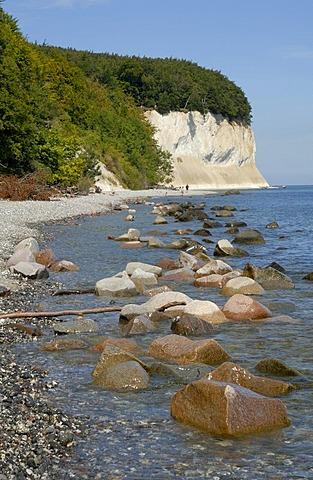 Chalk Cliffs of Ruegen, national park Jasmund, Ruegen, Rugia, Mecklenburg-Western Pomerania, Germany