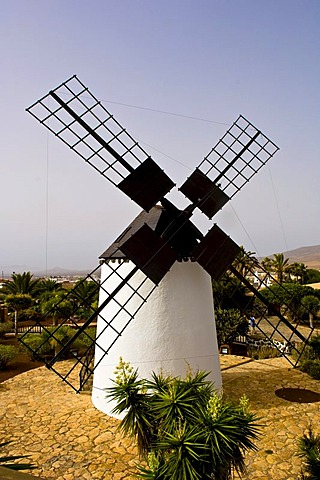 Windmill, Antigua, Fuerteventura, Canary Islands, Spain