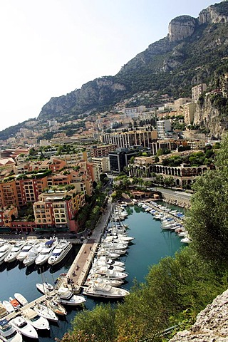 View on Monaco with harbor