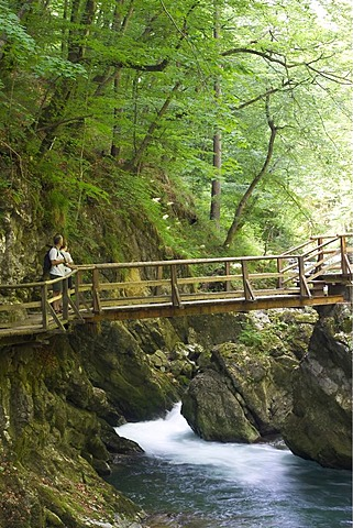 Vintgar Gorge with Radovna River near Bled -Triglav National Park - Slovenia