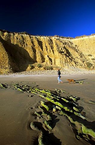 Conil de la Frontera Playa de Fontanilla - Costa de la Luz Andalusia Province Cadiz Spain