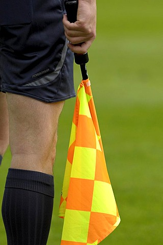 Linesman with flag