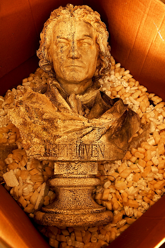 Beethoven bust in a box