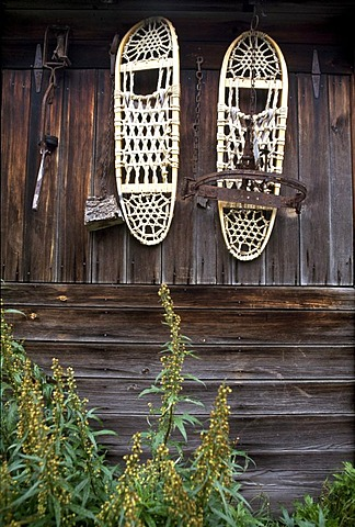 Snow shoes hanging on a gold digger's hut, Denali Village, Denali National Park, Alaska